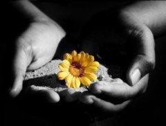 misericordia e tenerezza