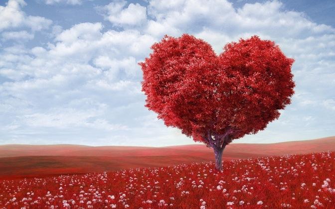 Questione d'amore – Buona domenica! – XXX domenica del Tempo Ordinario – Anno A