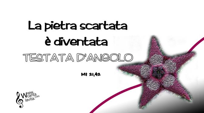 La volontà di Dio – BUONA DOMENICA! XXVII Tempo Ordinario – ANNO A